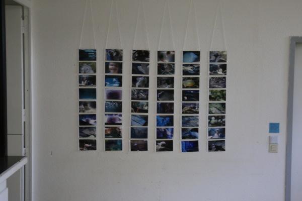 1 Galerie Sonnenland und andere Erfahrungen